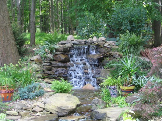 Bedford glens water gardens for Garden pond management